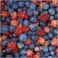 Fruits_of_the_forest_blackberries_blueberries_223865