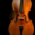 Orchestradominik-scythe-412567-unsplash