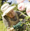 GardeningLady