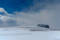 SnowyField